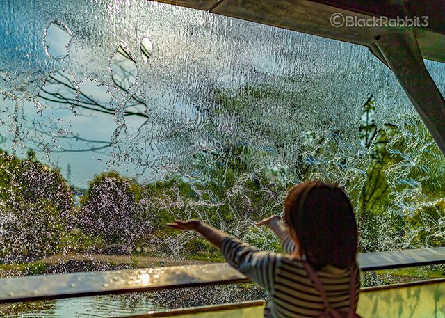 waterfall(とっとり花回廊、鳥取県)