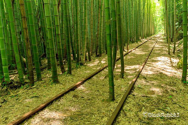 旧国鉄倉吉線