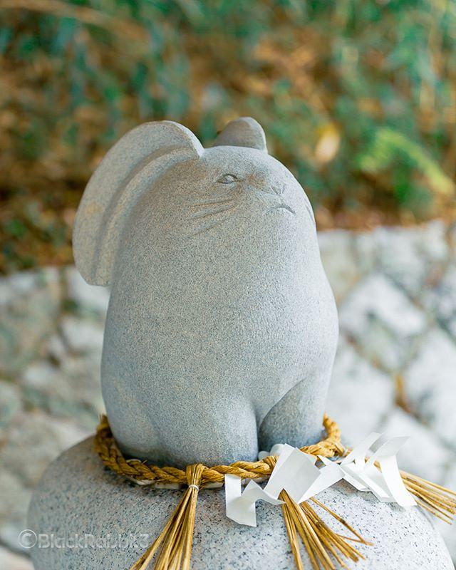 白兎神社(鳥取県鳥取市)