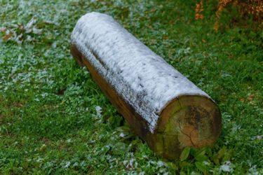 Frozen bench(広島市)