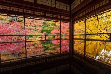 瑠璃光院(京都市左京区上高野)